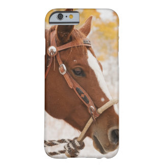 Horse Barely There iPhone 6 Case