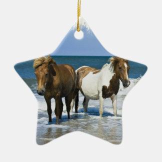 Horse Beach Ornament