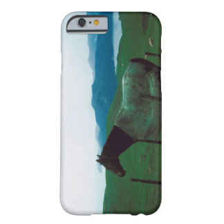 Horse behind fence barely there iPhone 6 case
