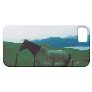 Horse behind fence case for the iPhone 5
