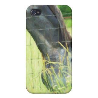 Horse behind fence iPhone 4/4S cases