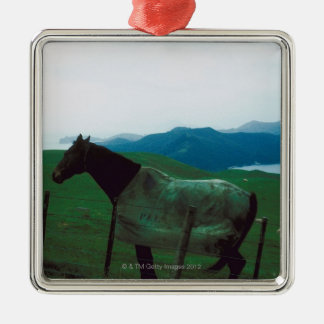 Horse behind fence Silver-Colored square decoration
