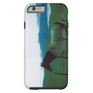 Horse behind fence tough iPhone 6 case