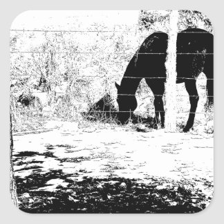 Horse Behind Fencepost in Pen and Ink Square Sticker