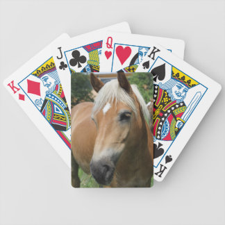 horse bicycle playing cards
