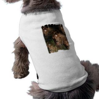 Horse Breeds  Pet Shirt