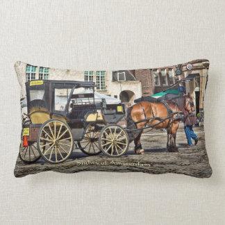 Horse Buggy Taxi, Sights of Amsterdam Lumbar Cushion