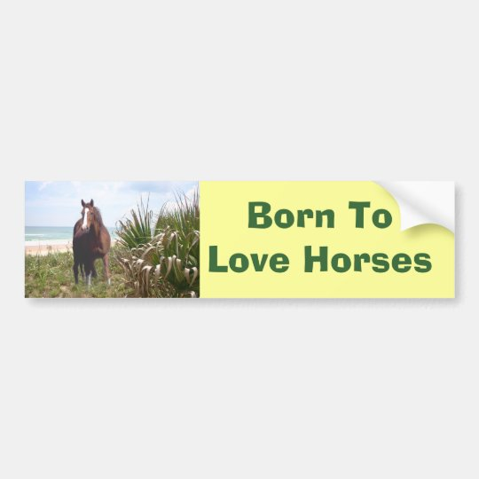 Horse Bumper Sticker Beach