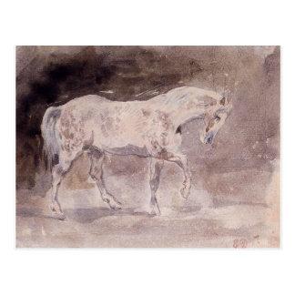 Horse by Eugene Delacroix Postcard