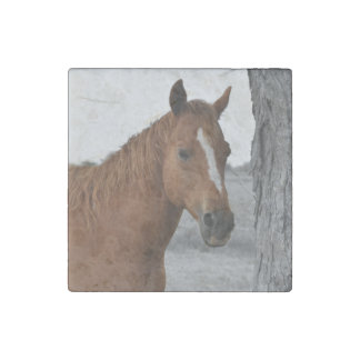 Horse By Tree Stone Magnet Stone Magnet