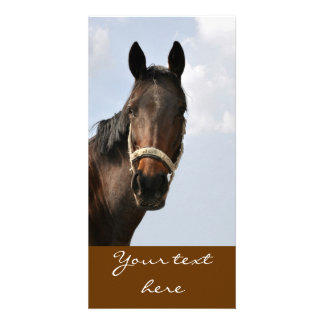 Horse Cards Personalised Photo Card