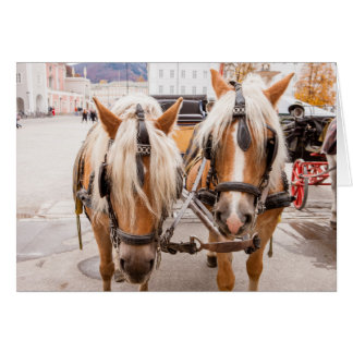 Horse Carriage | Austria Card