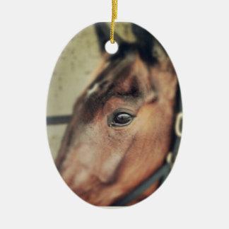 Horse Ceramic Oval Decoration