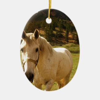 Horse Ceramic Oval Decoration