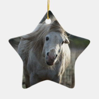 Horse Ceramic Star Decoration