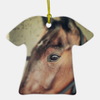 Horse Ceramic T-Shirt Decoration
