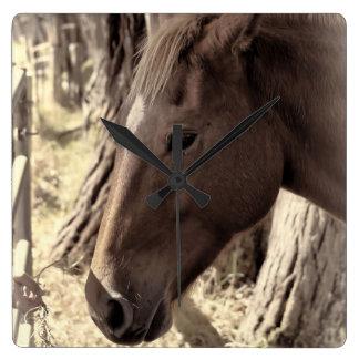 Horse Close Up Square Wall Clock