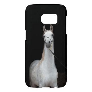 horse collection. arabian