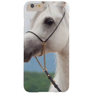 horse collection. arabian white barely there iPhone 6 plus case