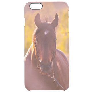 horse collection. autumn clear iPhone 6 plus case