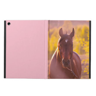 horse collection. autumn iPad air cover