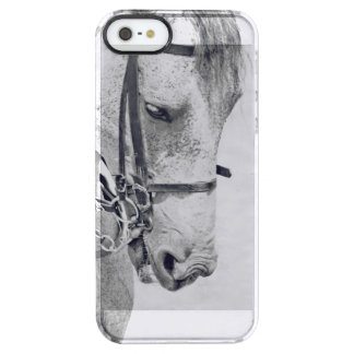 horse collection. spain clear iPhone SE/5/5s case
