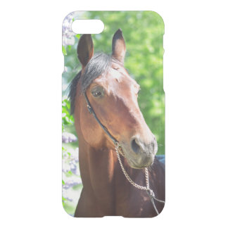 horse collection. spring iPhone 8/7 case