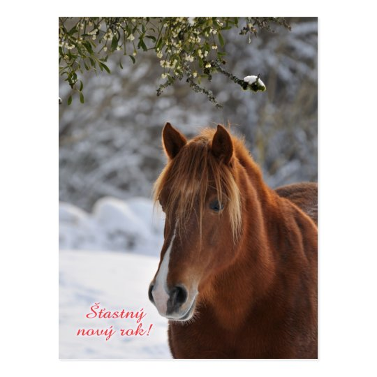 Horse Czech New Year postcard