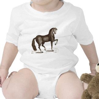 Horse Dance - DANCING HORSE Baby Creeper