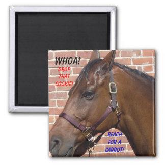 Horse Diet Fridge Magnet