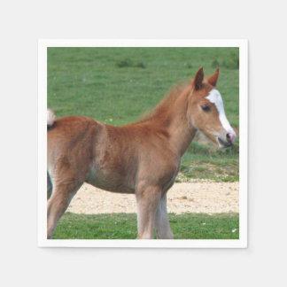 Horse Disposable Napkins
