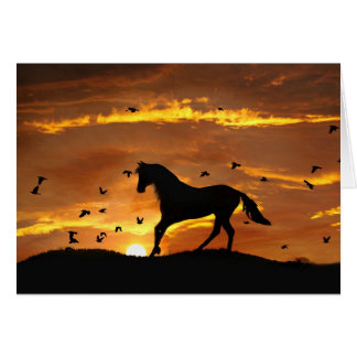 horse Divorce Encouargement Greeting Card