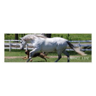 HORSE & DOG EMBRACE LIFE PACK OF SKINNY BUSINESS CARDS