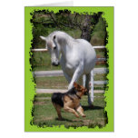 HORSE & DOG PLAY CARDS