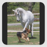 HORSE & DOG PLAY STICKERS