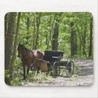 Horse drawn carriage tethered in woods mouse mat