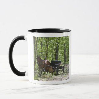 Horse drawn carriage tethered in woods mug