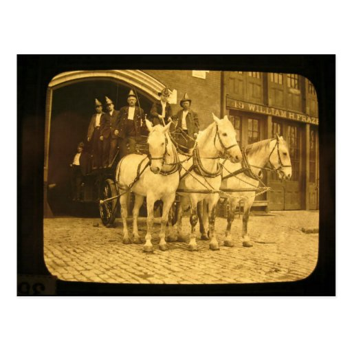 Horse Drawn Hook and Ladder Fire Company - Vintage Postcards