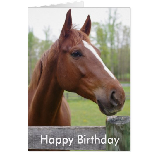Horse Equestrian Hunter Birthday Card