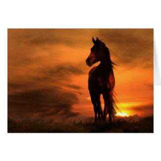 Horse Equine Sympathy Card