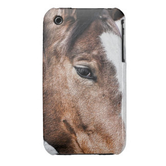 horse eye iPhone 3 cases