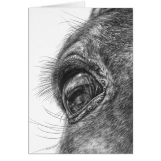 Horse Eye Closeup Drawing by Kelli Swan Card