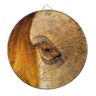 Horse eye dartboard