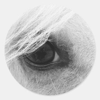 Horse Eye in Black and White Round Sticker