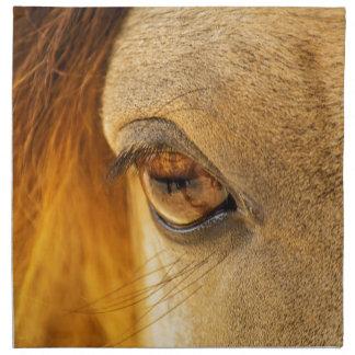 Horse eye napkin