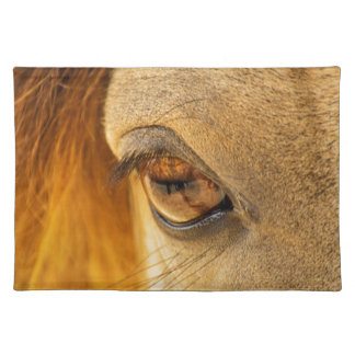 Horse eye placemat