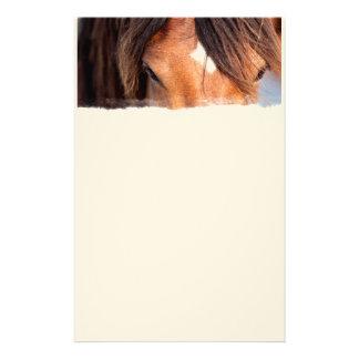Horse Eyes Personalized Stationery