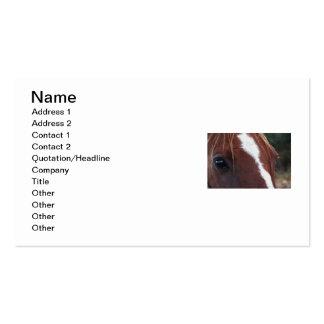 Horse Face Closeup Business Cards