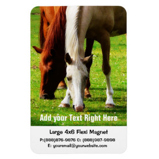 Horse Farm or Ranch Business Rectangular Photo Magnet