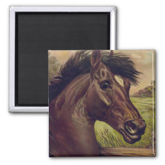 horse farm ranch ride sports western equine pet 2 inch square magnet